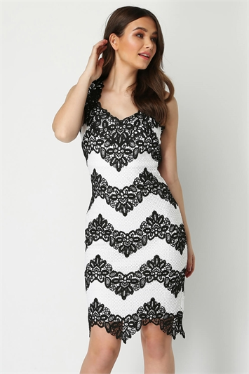 Contrast Lace Fitted Dress